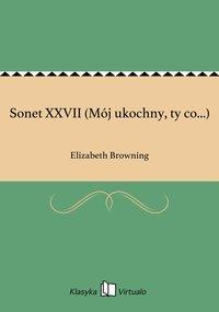 Sonet XXVII (Mój ukochny, ty co...)