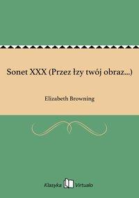 Sonet XXX (Przez łzy twój obraz...)