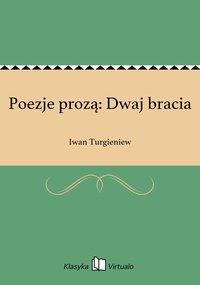 Poezje prozą: Dwaj bracia