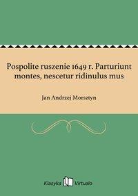 Pospolite ruszenie 1649 r. Parturiunt montes, nescetur ridinulus mus