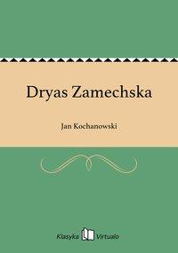 Dryas Zamechska