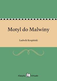 Motyl do Malwiny