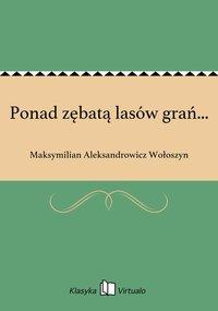 Ponad zębatą lasów grań... - Maksymilian Aleksandrowicz Wołoszyn - ebook