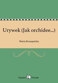 Urywek (Jak orchidee...)