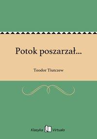 Potok poszarzał... - Teodor Tiutczew - ebook