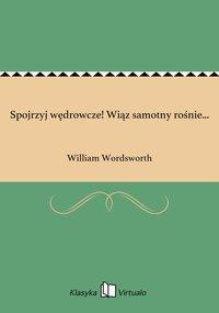 Spojrzyj wędrowcze! Wiąz samotny rośnie... - William Wordsworth - ebook